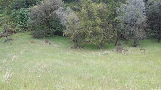 3 Acres Cedar Ravine - Photo 1