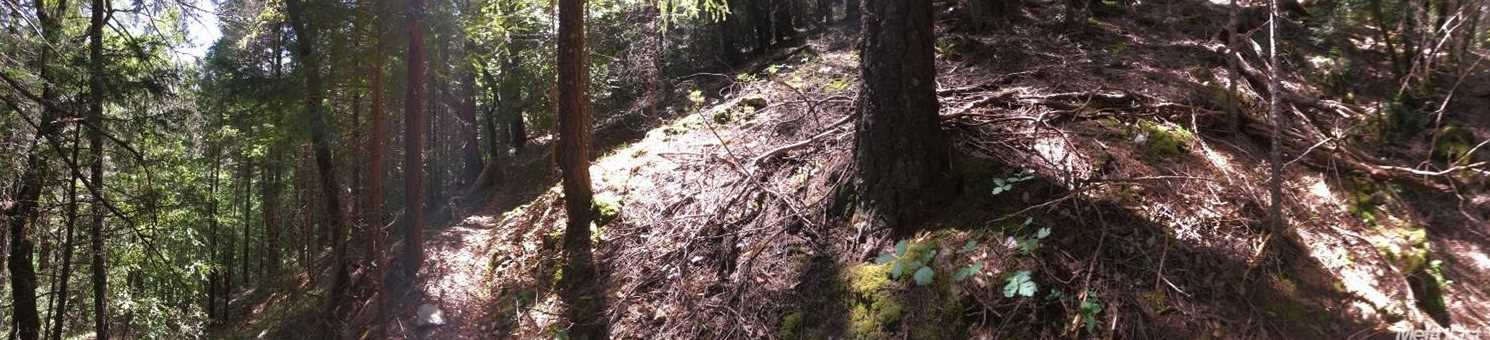 0 Slate Mountain Mine Rd - Photo 11