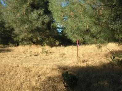 10  Acres Dream Ranch Circle - Photo 19