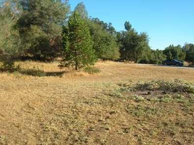 10  Acres Dream Ranch Circle - Photo 15