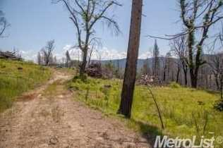 0 Elk Ranch Road - Photo 13
