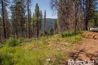 0 Elk Ranch Road - Photo 3