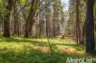 0 Elk Ranch Road - Photo 7