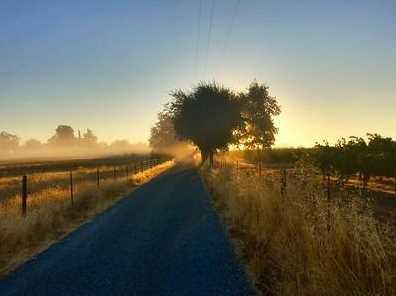 8869 Orr Road - Photo 23