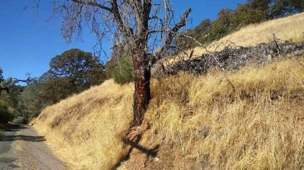 11732 Widgeon Way - Photo 7
