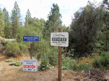 18570 Wildlife Trail - Photo 3