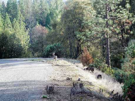 18570 Wildlife Trail - Photo 9