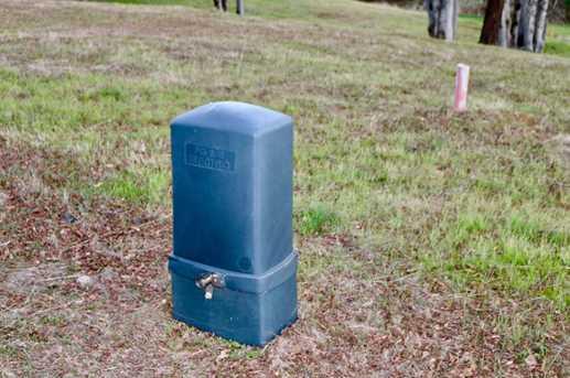 12990 Austin Forest Circle - Photo 9
