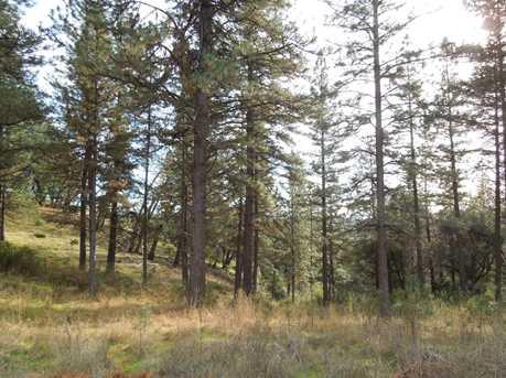 29 B Wildlife Trail - Photo 3