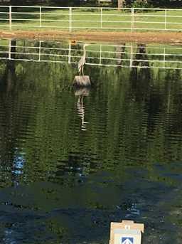 5220 Pony Back Court - Photo 29