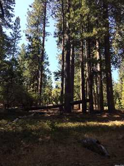 0 Lot 117 Grizzly Flat Rd - Photo 3