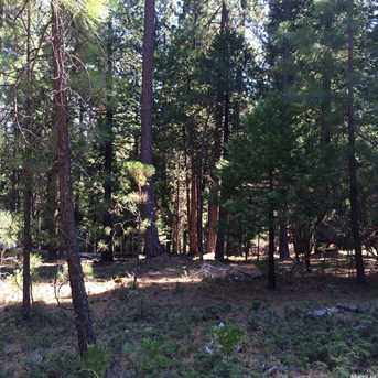 0 Lot 117 Grizzly Flat Rd - Photo 7