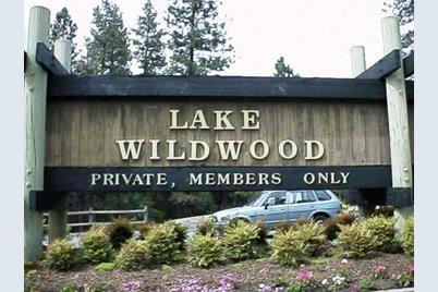 14380 Lake Wildwood Drive - Photo 1
