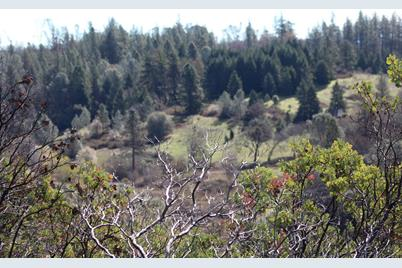 0  Lot -A Placer Hills Road - Photo 1