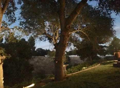 8805 Oak View Ct - Photo 7