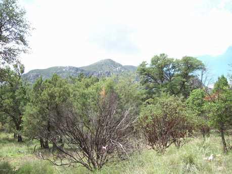 Parcel B E Ramsey Canyon - Photo 5
