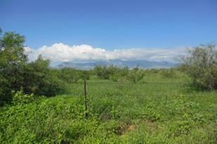 Lot A Sw Corner Of Palominas Herefor - Photo 1