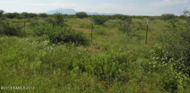Lot B Palominas Road - Photo 3