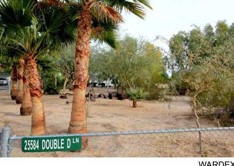 25584 Double D Lane - Photo 25