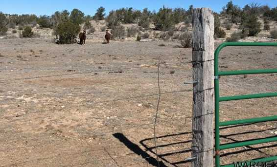 Lot 636 Lucky Dog Ranch - Photo 23