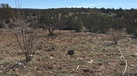 Lot 636 Lucky Dog Ranch - Photo 27