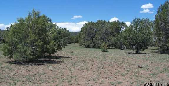 4 Lots High Mountain Road - Photo 7