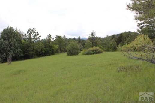 Tbd Beulah Highlands Road - Photo 7