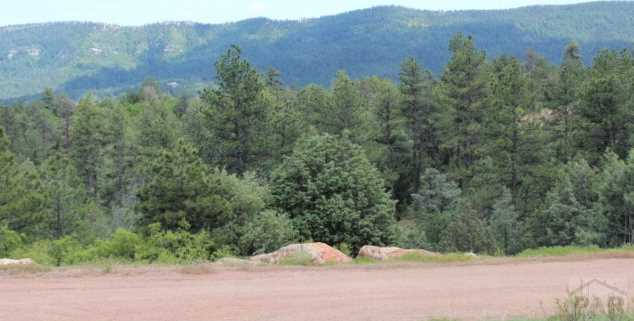 Tbd Beulah Highlands Road - Photo 21