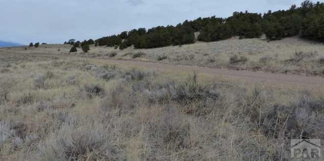731 Comanche Rd - Photo 5