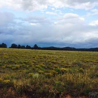1011 Blazing Saddle Trail - Photo 3