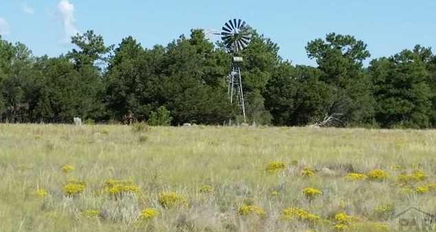 1011 Blazing Saddle Trail - Photo 13