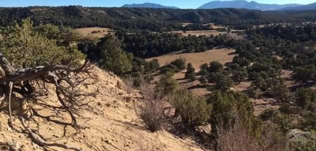 48&49 Colorado Land and Grazing - Photo 11