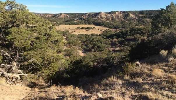 48&49 Colorado Land and Grazing - Photo 5