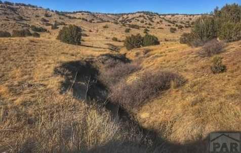 43.3A Muddy Creek Rd - Photo 1