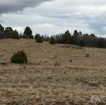 Lot 11B Majors Ranch - Photo 5