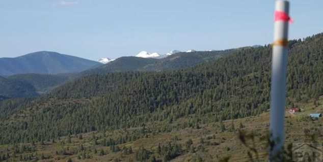 Lot 29 Tres Valles West - Photo 11