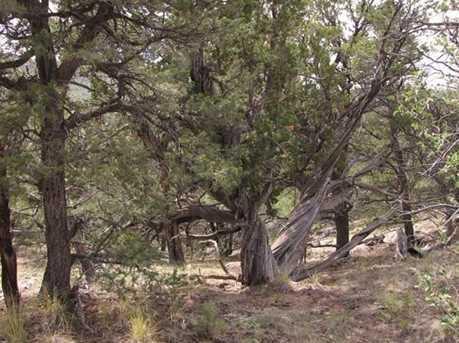 Milligan Milligan Ranch - Photo 17