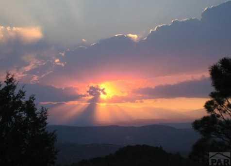 33021 Sunset Dr - Photo 43