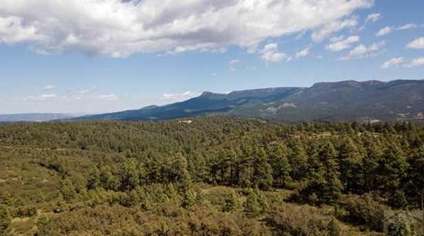 33029 Alpine Meadow - Photo 36