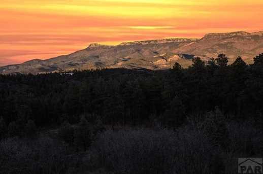 33029 Alpine Meadow - Photo 47