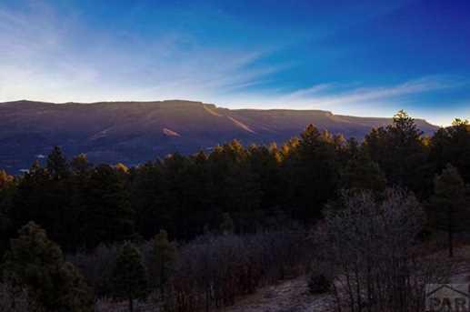 33029 Alpine Meadow - Photo 42