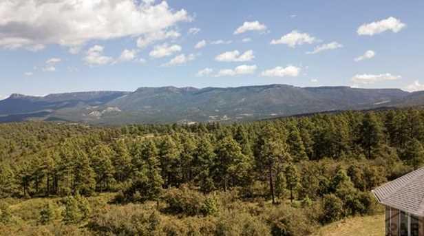 33029 Alpine Meadow - Photo 35