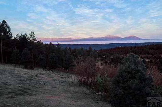 33029 Alpine Meadow - Photo 48