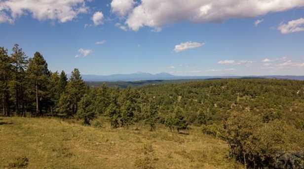 33029 Alpine Meadow - Photo 39