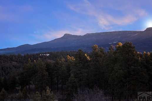 33029 Alpine Meadow - Photo 49