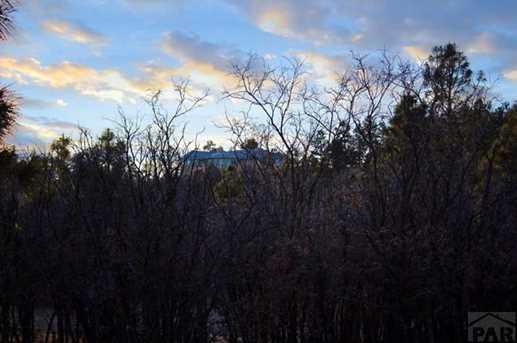 33029 Alpine Meadow - Photo 46