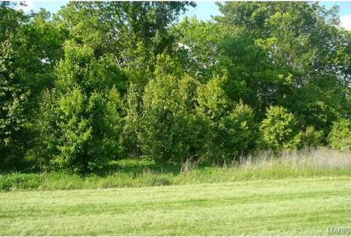 17455 Wild Horse Creek Road - Photo 8