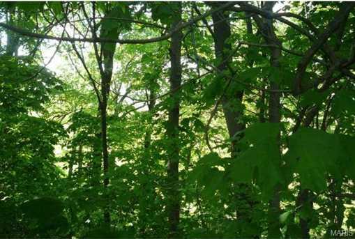 17455 Wild Horse Creek Road - Photo 12
