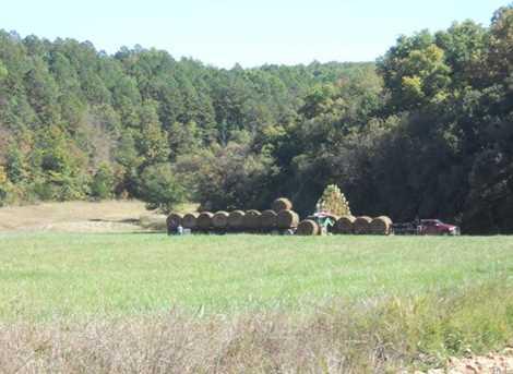 0 County Road 443 - Photo 69