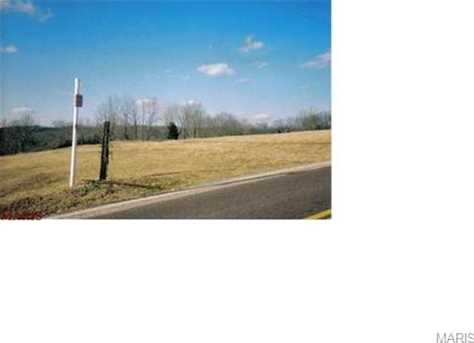 8497 Old Lemay Ferry Road - Photo 1